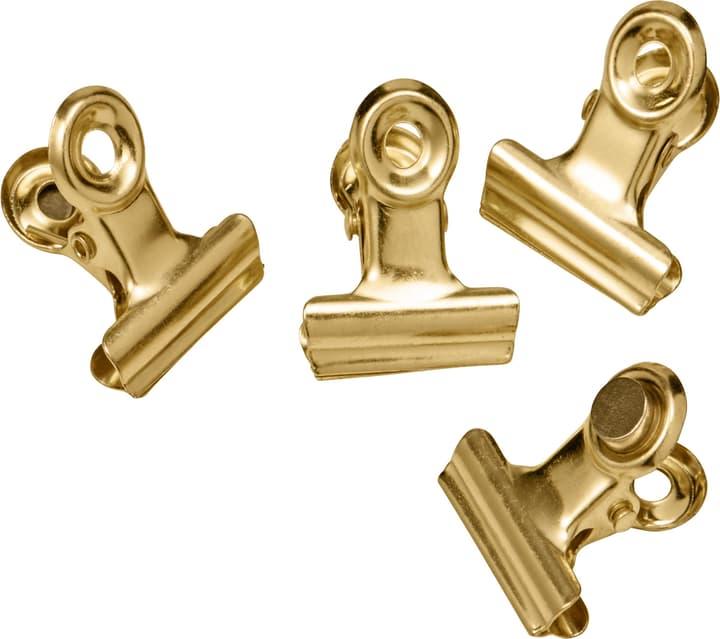 MINI GRAFFA Magnete 432019900000 N. figura 1