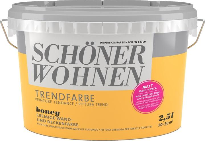 Couleur tendance mate Honey 2.5 l Schöner Wohnen 660907300000 Couleur Honey Contenu 2.5 l Photo no. 1