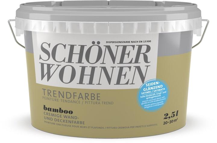 Vernice di tendenza satinata Bamboo 2.5 l Schöner Wohnen 660944100000 Colore Bamboo Contenuto 2.5 l N. figura 1