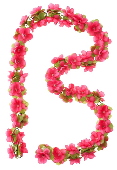 Flower Garland Basil 462952300000 Photo no. 1