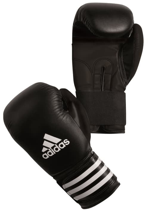 Boxing Glove SMU Boxing Gant Adidas 471978200000 Photo no. 1
