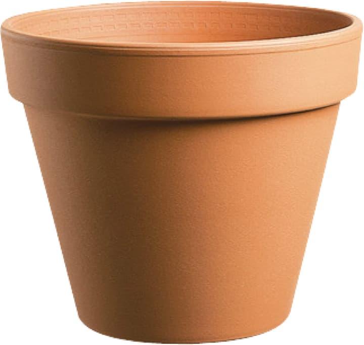 Vaso in terracotta Euganea 659533800000 Taglio ø: 27.0 cm x A: 23.2 cm Colore Marrone N. figura 1