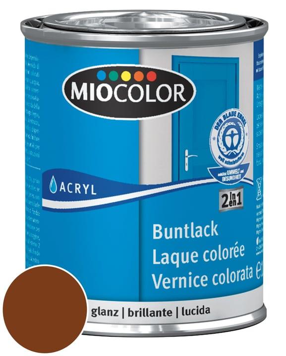 Acryl Vernice colorata lucida Marrone noce 750 ml Miocolor 660549300000 Contenuto 750.0 ml Colore Marrone noce N. figura 1