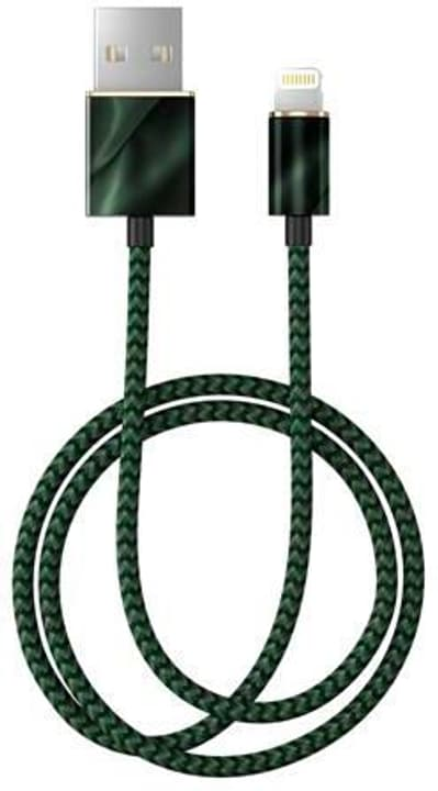"Câble 1.0m, Lightning->USB ""Emerald Satin"" Câble iDeal of Sweden 785300148883 Photo no. 1"
