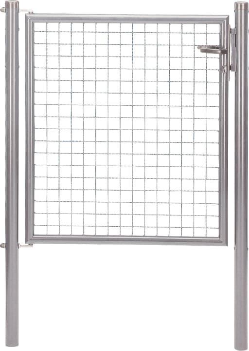 Porte galvanisé - acheter chez Do it + Garden
