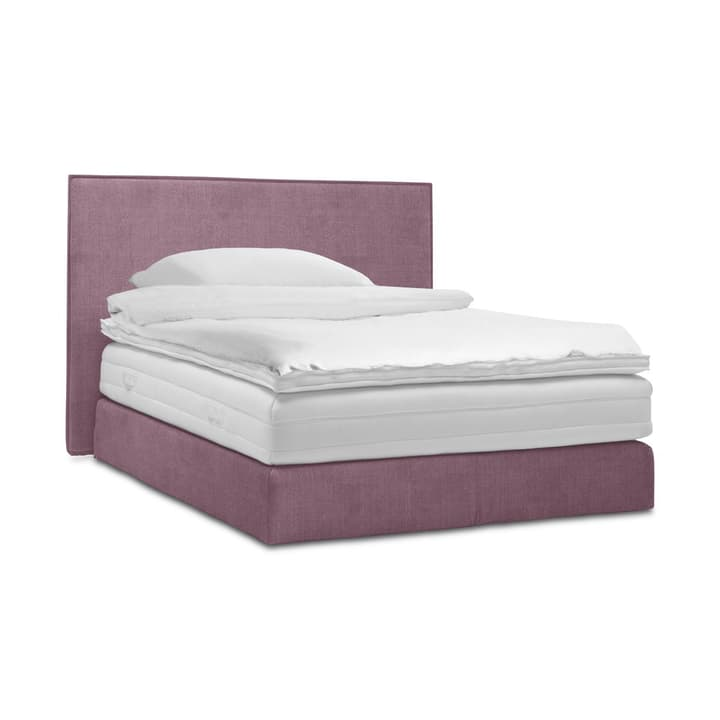 GRACE Lit Boxspring 364295300000 Dimensions L: 200.0 cm x P: 160.0 cm Couleur Lilas Photo no. 1