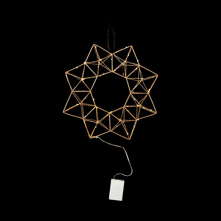 WIRE LED- Oggetto decorazione 390262100000 N. figura 1