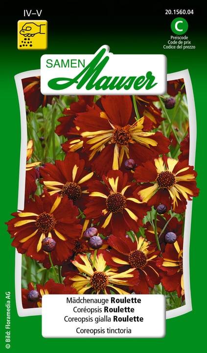 Coréopsis Roulette Samen Mauser 650105301000 Contenu 0.25 g (env. 50 plantes ou 4 - 5 m²) Photo no. 1