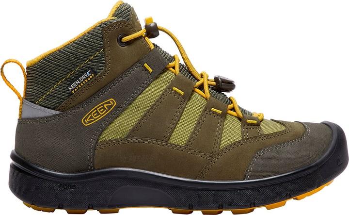 Hikeport Mid WP Kinder-Freizeitschuh Keen 465503937060 Farbe Grün Grösse 37 Bild-Nr. 1