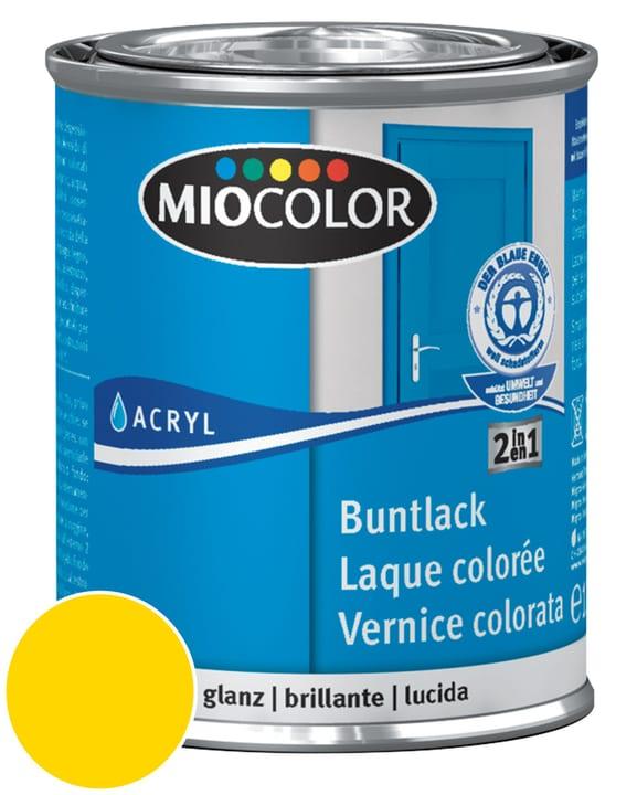 Acryl Vernice colorata lucida Giallo navone 125 ml Miocolor 660549400000 Colore Giallo navone Contenuto 125.0 ml N. figura 1
