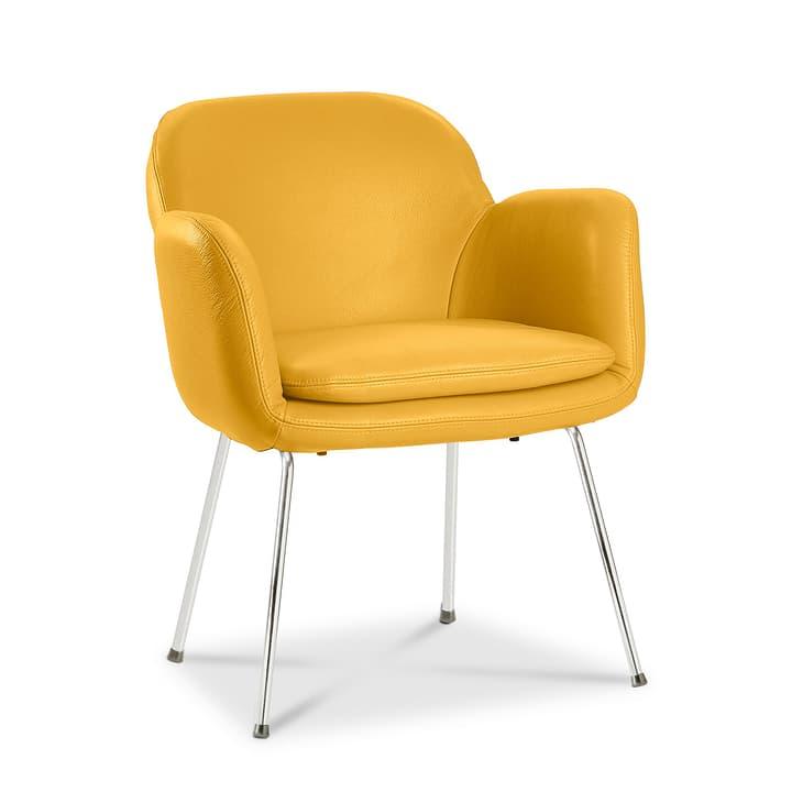 LONZO Chaise 366023580702 Dimensions L: 63.0 cm x P: 61.0 cm x H: 78.0 cm Couleur Jaune Photo no. 1