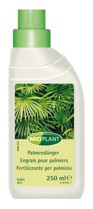 Engrais pour palmiers, 250 ml Mioplant 658242100000 Photo no. 1