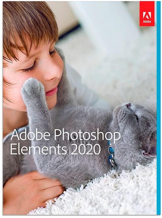 Photoshop Elements 2020 Update PC/Mac (D) Physique (Box) Adobe 785300147096 Photo no. 1
