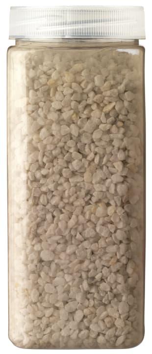 TOM Granulés 440574000100 Couleur Blanc Dimensions L: 6.5 cm x H: 16.0 cm Photo no. 1
