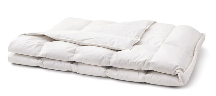 PRIMADAUN WARM Couette en plumettes 451741012510 Couleur Blanc Dimensions L: 200.0 cm x H: 210.0 cm Photo no. 1