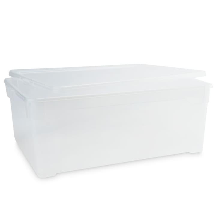 CLEAR BOX Contenitore per scapre uomo 386025100000 Dimensioni L: 36.5 cm x P: 26.5 cm x A: 14.0 cm Colore Trasparente N. figura 1