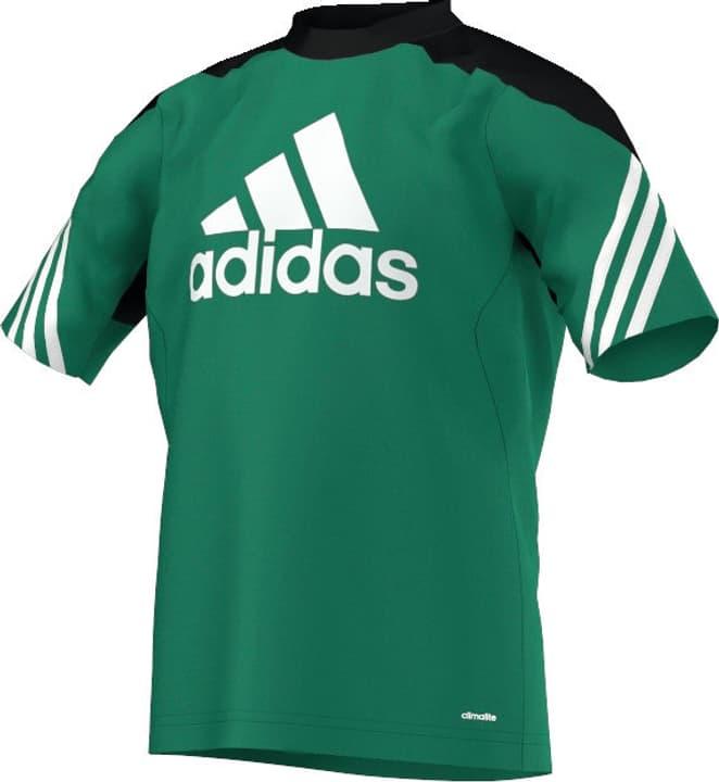 Sereno14 Training Jersey Youth T-shirt de football pour enfant Adidas 469259014060 Couleur vert Taille 140 Photo no. 1