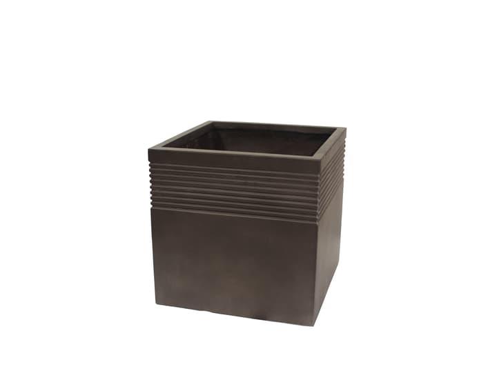 Terralite Bamboo Square Pot 658612200000 Taglio L: 55.0 cm x L: 55.0 cm x A: 55.0 cm Colore Antracite N. figura 1