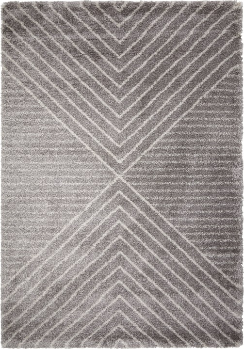 IMELDA Tapis 412017716080 Couleur gris Dimensions L: 160.0 cm x P: 230.0 cm Photo no. 1