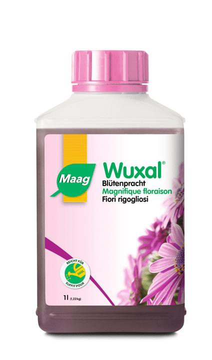 Wuxal Fiori rigogliosi, 1 l Maag 658200400000 N. figura 1