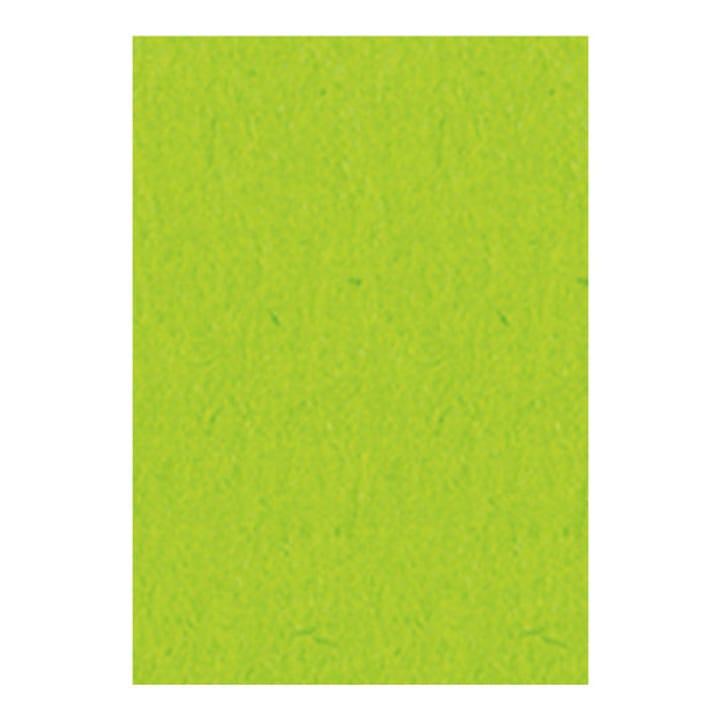 Fotokarton hellgrün, 50x70 cm I AM CREATIVE 666188400000 Bild Nr. 1