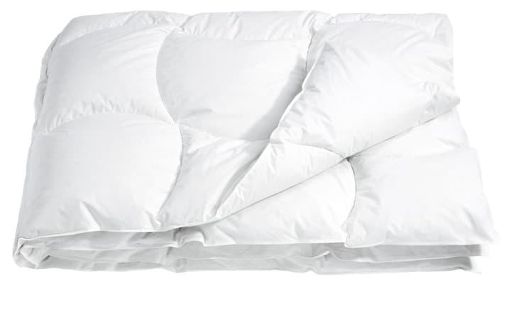 DELUXE STANDARD Piumino 451738512310 Colore Bianco Dimensioni L: 160.0 cm x P: 210.0 cm N. figura 1