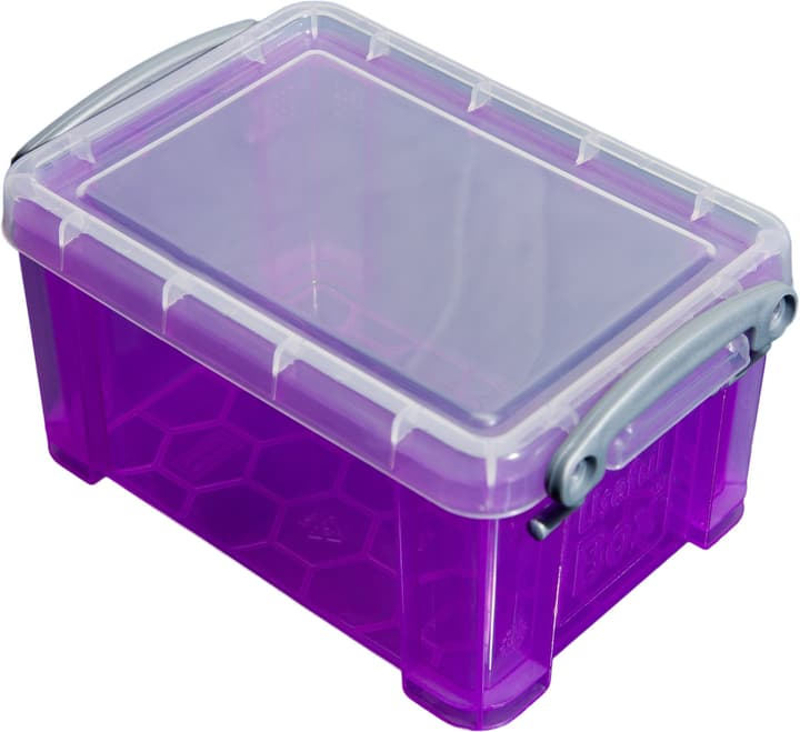 Box di plastica 1.6L Really Useful Box 603731600000 Taglio L: 11.0 x L: 13.5 x A: 19.5 Colore Viola N. figura 1