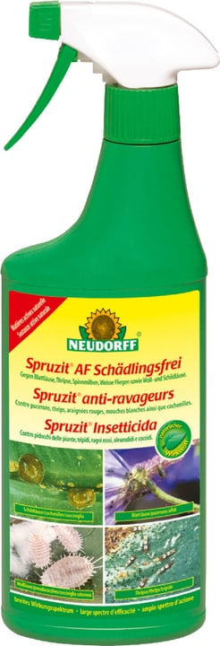 Spruzit AF anti-ravageurs, 500 ml Neudorff 658504700000 Photo no. 1