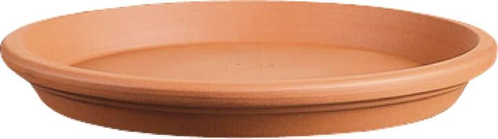 Sottovaso in terracotta Deroma 659442100000 Taglio ø: 23.5 cm x A: 3.1 cm Colore Beige N. figura 1