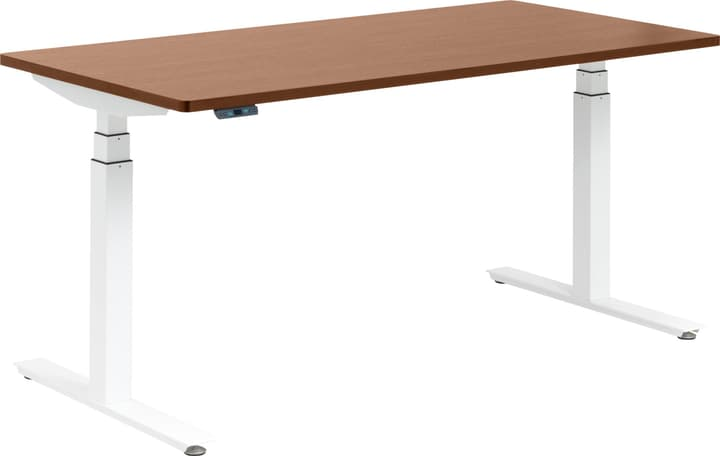 FLEXCUBE Bureau 401836700000 Dimensions L: 160.0 cm x P: 80.0 cm x H: 75.0 cm Couleur Chêne Photo no. 1