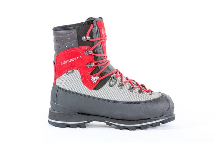 F1 GTX Evo SX Chaussures de travail Lowa 499695346580 Couleur gris Taille 46.5 Photo no. 1