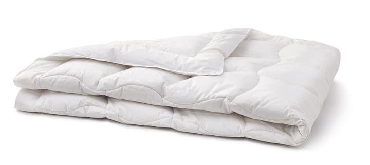 SANADAUN MEDIUM WARM Duvet de qualité supérieure 451747712410 Couleur Blanc Dimensions L: 160.0 cm x P: 240.0 cm Photo no. 1