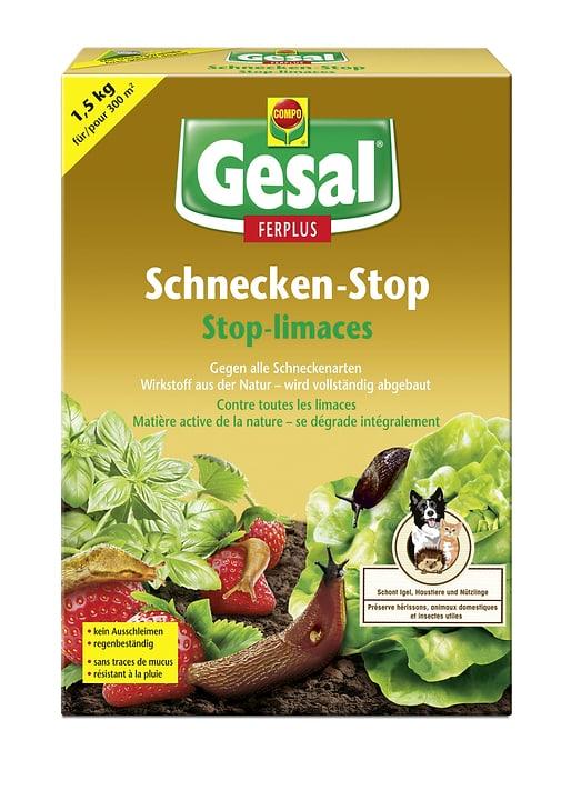 Gesal Schnecken-Stop FERPLUS, 1.5 kg Compo Gesal 658508900000 Bild Nr. 1