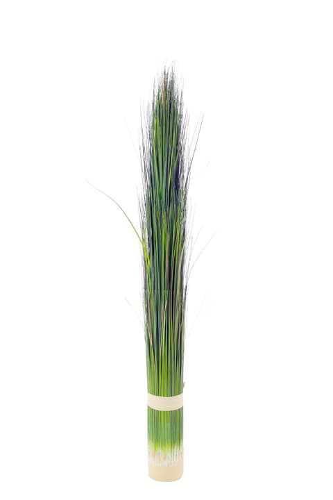 Pennisetum artificiel vert clair Do it + Garden 659328600000 N. figura 1