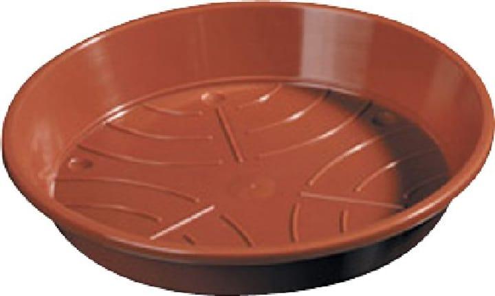 Sottovaso in materia sintetica 659445400000 Taglio ø: 6.0 cm Colore Marrone N. figura 1