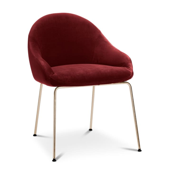 EARL Chaise 366024292504 Dimensions L: 58.0 cm x P: 65.0 cm x H: 76.0 cm Couleur Rouge foncé Photo no. 1