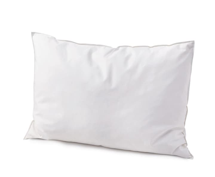 PRIMO MEDIUM Oreiller en plumes 451741010810 Couleur Blanc Dimensions L: 50.0 cm x P: 70.0 cm Photo no. 1