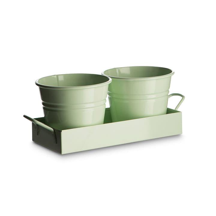 COLLECTON Pots pour les herbes 382031800000 Dimensions L: 20.0 cm x P: 9.0 cm x H: 9.0 cm Couleur Vert menthe Photo no. 1
