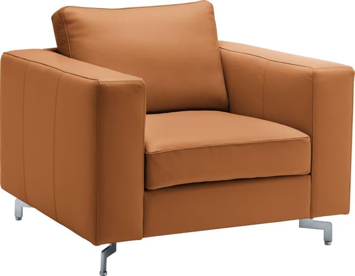 DIENER Sessel 402471000000 Farbe Cognac Grösse B: 97.0 cm x T: 92.0 cm x H: 80.0 cm Bild Nr. 1