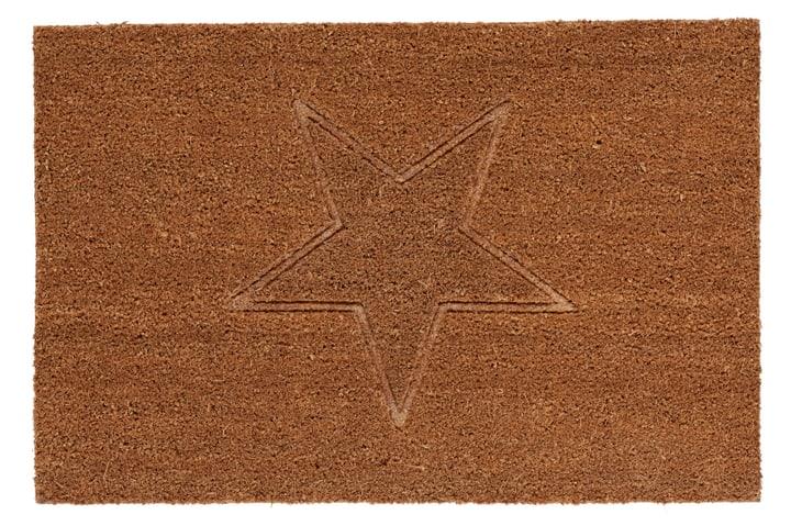 LIVIO paillasson 412813905070 Couleur brun Dimensions L: 50.0 cm x P: 75.0 cm x H:  Photo no. 1