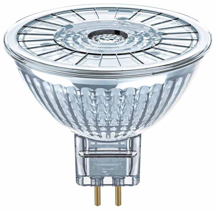 LED ST MR16 20 36 GU5,3/230lm=20W Osram 421054300000 Bild Nr. 1