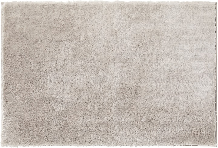 CELIO Natte bain 453026451261 Couleur Gris clair Dimensions L: 90.0 cm x H: 60.0 cm Photo no. 1