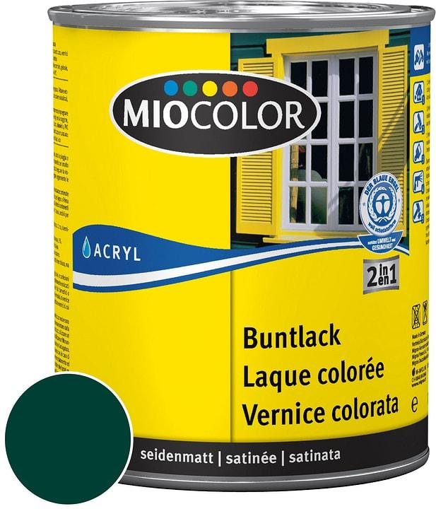Acryl Vernice colorata satinata Verde muschio 750 ml Miocolor 660554300000 Contenuto 750.0 ml Colore Verde muschio, Verde muschio N. figura 1