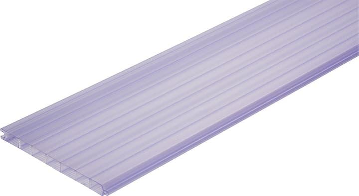 Eléments en PVC à double paroi 676432500000 Couleur Clair-Azur Taille L: 200.0 mm x L: 1500.0 mm x H: 16.0 mm Photo no. 1