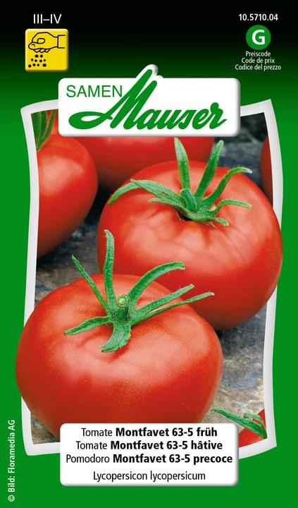 Pomodoro Montfavet H63-5 precoce Semente Samen Mauser 650115703000 Contenuto 0.25 g (ca. 40 piante o 20 m²) N. figura 1
