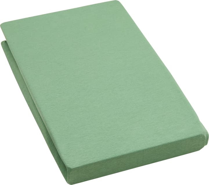 EVAN Drap-housse en jersey stretch 451053930560 Dimensions L: 180.0 cm x H: 200.0 cm Couleur Vert Photo no. 1