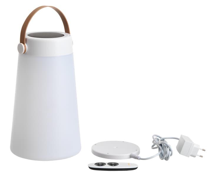RAFFAELE LED Speaker 420529400000 N. figura 1