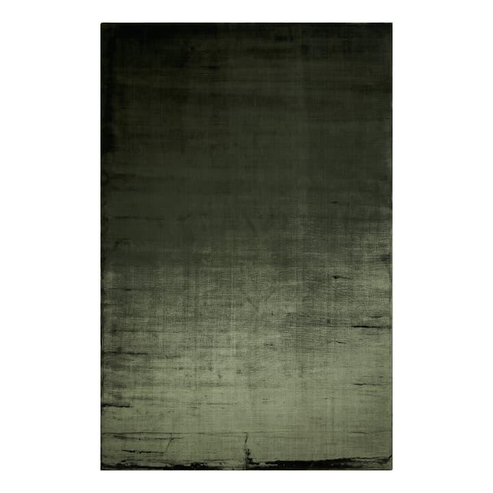 BENEDICT Tapis 371074700000 Couleur Vert Dimensions L: 200.0 cm x P: 300.0 cm Photo no. 1
