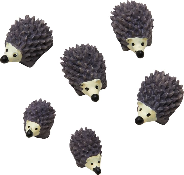 HEDGEHOG Aimants 432020000000 Photo no. 1