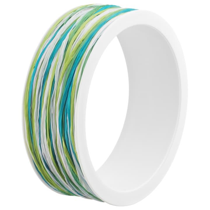 VIKTORIA Nastro da regalo 440643900160 Colore Verde Dimensioni L: 5.0 mm N. figura 1